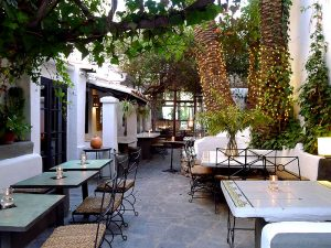 The garden of La Brasa, a little orchard in the city