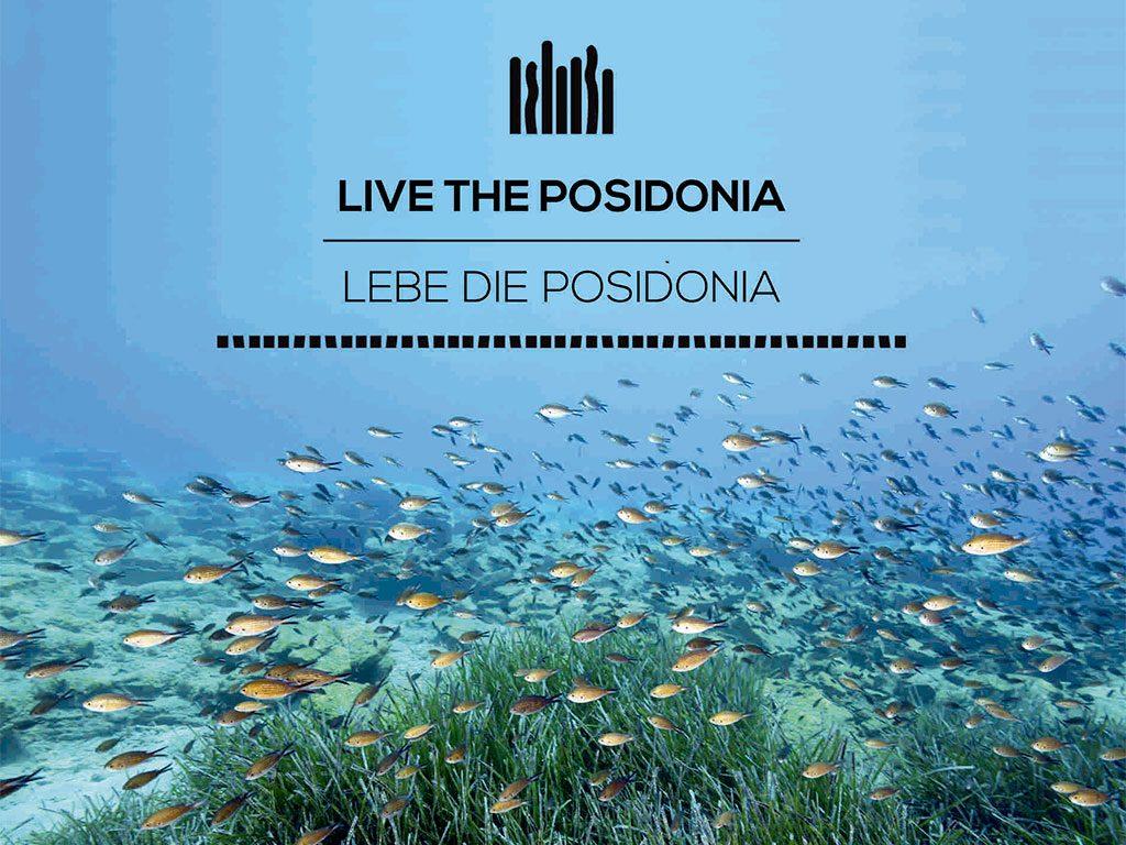 Livetheposidonia
